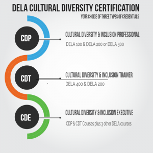 what is diversity certification